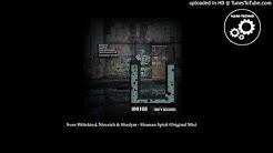 Sven Wittekind, Niereich & Shadym - Shaman Spirit (Original Mix)
