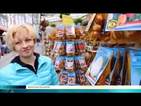 Вопрос: Что это за история про испорченный shy тюльпан?