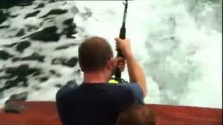 Sailfish Catch | Extreme Fishing
