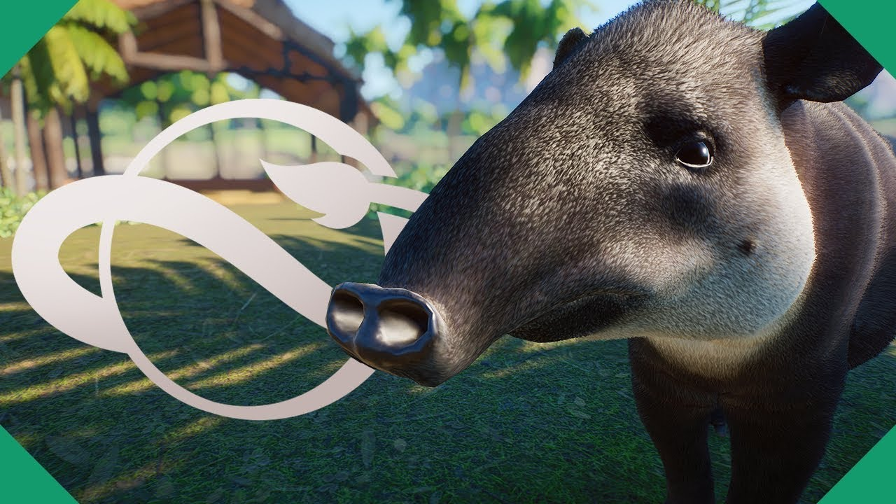 Our First Campaign Exhibit! BAIRD'S TAPIR BUILD   Planet Zoo (Campaign Playthrough)