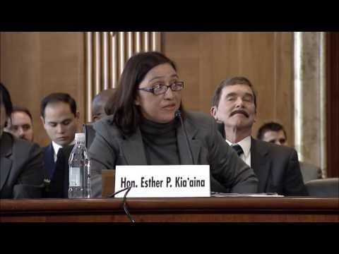 Senator Warren  American Citizens in U S  Territories Should Have Full Voting Rights