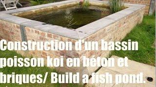 construction d un bassin poisson koi en