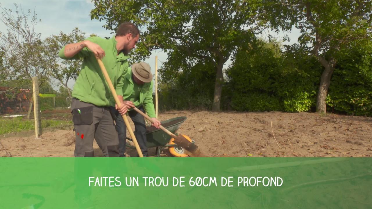 Plantation d 39 arbre fruitier demi tige famiflora youtube - Plantation d un fruitier ...