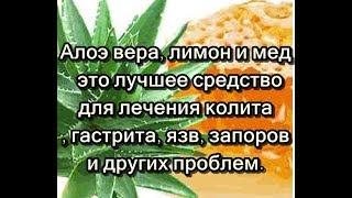 Алоэ вера, лимон и мед – это лучшее средство для лечения колита, гастрита, язв, запоров и других ...