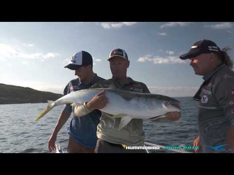 BLA - Humminbird & Minn Kota - Chasing Kingy's With Michael Guest, Reel Action TV