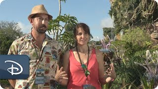 Guest Share What They Love About Pandora - The World of Avatar | Walt Disney World