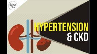 Patofisiologi -  Cidera Ginjal Akut Intrarenal / Azotemia / Acute Kidney Injury.