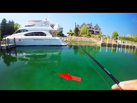 Catching BIG bass off MILLION dollar YACHTS in Crystal Clear Water