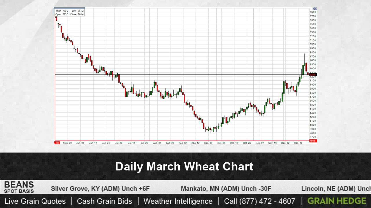 Grain TV: Strong Export Inspections Boost Corn, Soybeans – AgFax