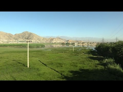 War-torn Kabul becomes a protected site for migratory birds
