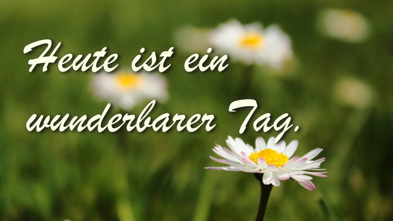 i like auf deutsch