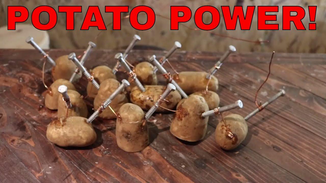 potato light bulb experiment for kids | Americanwarmoms.org