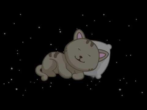Спокойной ночи, кот! :)