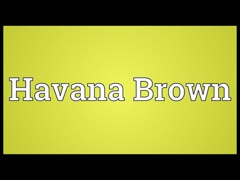 Havana Brown Meaning