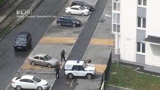 18+ В Екатеринбурге полицейские застрелили агрессивную собаку