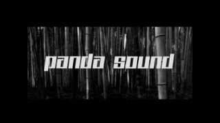 Panda Sound - Hard Good Bye (FREE DOWNLOAD)