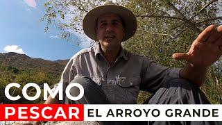 Como Pescar con Mosca el Arroyo Grande - Mendoza