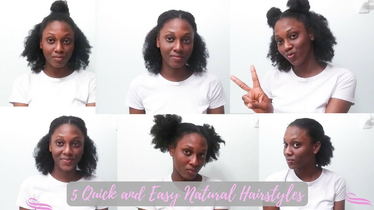 5 Quick and Easy Natural Hairstyles for Short/Medium Type 4 Natural ...