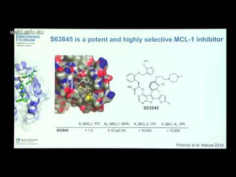 S0107: Kelly G (2017): Investigating a novel MCL-1 inhibitor drug as a therapeutic for MYC lymphoma