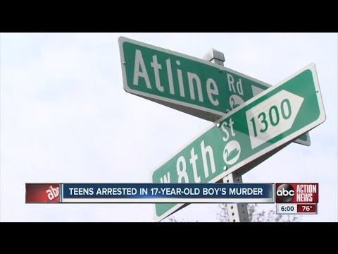 Lakeland teenager's murder marks rise of gang violence in neighborhood