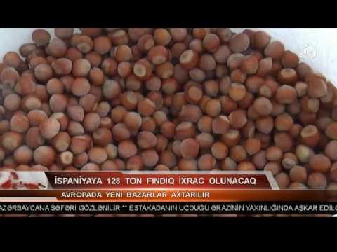 """""""Made in Azerbaijan"""" - hazelnut exports"""