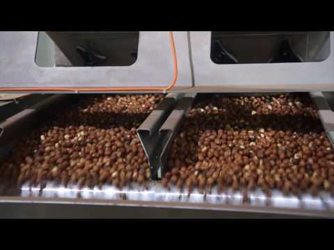 Raw hazelnut sorting machine Nimbus BSI - TOMRA Sorting