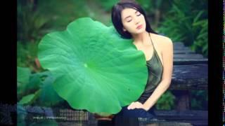 Bản Án Chung Thân - Nhà văn Phương Lan - Video Youtube: Trần Ngọc