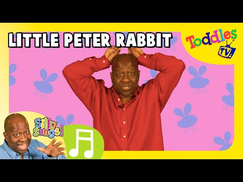 Little Peter Rabbit   SILLY SONGS    Toddles TV