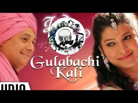 Gulabachi Kali Dj Ajay mp3