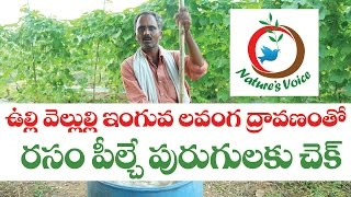 Natural Farming | How to Control Pest with Natural Ingrediants