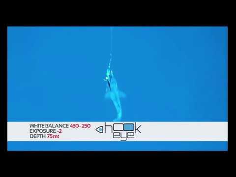 Testing Hook-Eye Cam with Bolentino at 75 meters depth