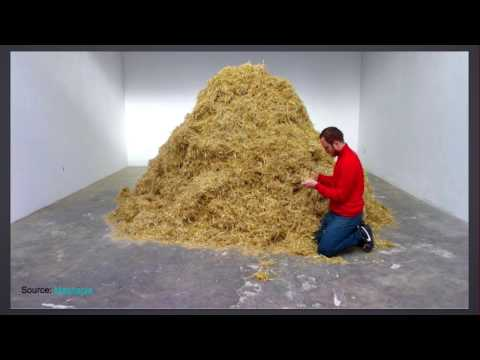 """""""Needle in the Haystack - Mining for Actionable Information in the Noisy Web"""""""