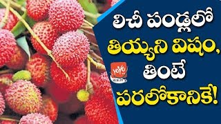 Amazing Health Benefits Of Lychee | Fruit Be Poisonous? How to Eat This Fruit Safely |YOYO TV Health