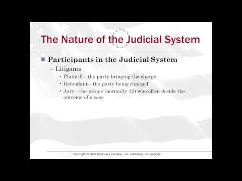 16 1 Nature of the Judicial System