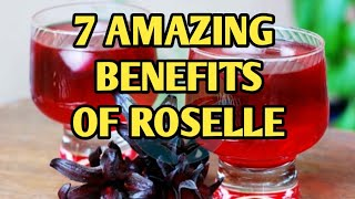 THE AMAZING BENEFITS OF ROSELLE. MUST WATCH