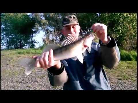 рыбалка судак в мае