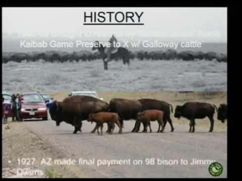 2017 Spring Summer Bison Hunter Clinic