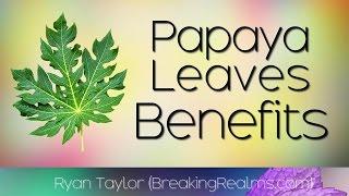 Papaya Leaves: Benefits and Uses