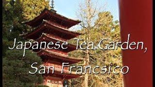 Japanese Tea Garden,San Francisco movie (HD)
