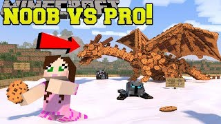 Minecraft: NOOB VS PRO!!! - DEFEND THE COOKIES! - Mini-Game