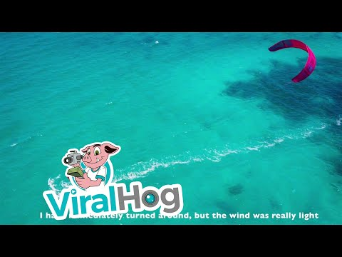 Kitesurfing with Jaws