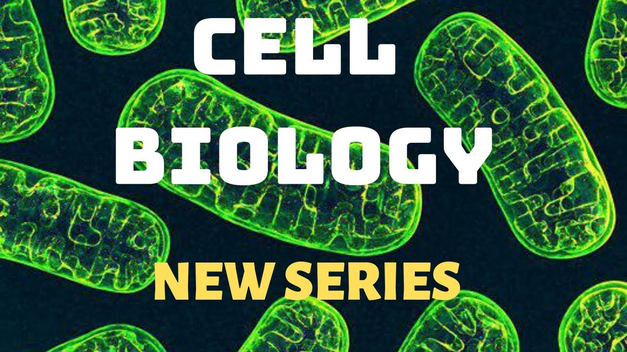 Cell Biology | New Series | Tamil - YouTube