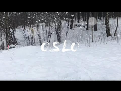 Exchange Vlog 2: Oslo