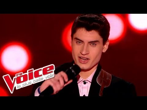 The Voice 2015│David Thibault - Blue...