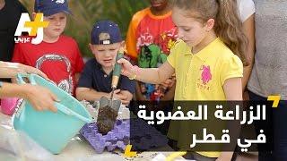 تحدي الزراعة العضوية في قطر