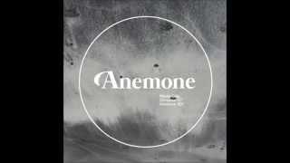 Nikola Gala - Triodion (Jonas Kopp Remix) [Anemone Recordings]