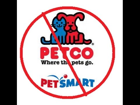 Shocking footage from petsmart and petco doovi for Does petco sell fish