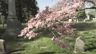 Hollywood Cemetery 2 - Richmond