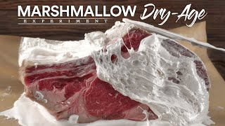 I Dry-Aged Steaks iฑ Marshmallow and This Happened!