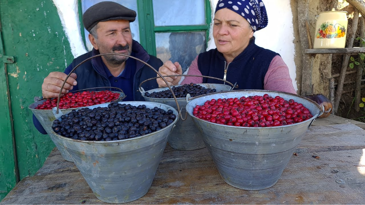 Download Best Method Making Wild Berry Sweets in the  Village